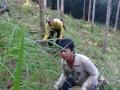 140525 Cutting seagrass