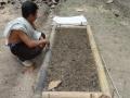 140823 Seedling preparation